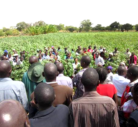 Farmers being trained on benefits of mechanisation